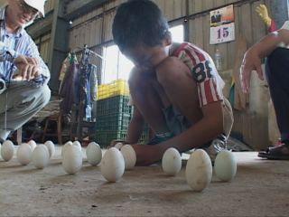 Costumbre que consite en colocar los huevos en posición vertical para tener buena suerte.