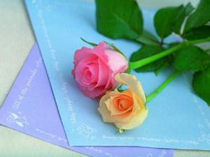 2 rosas: el mundo es para nosotros dos