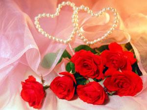 Seis rosas: